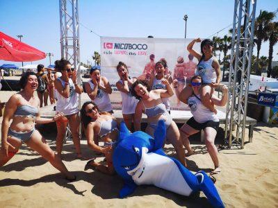 torneo tiburón